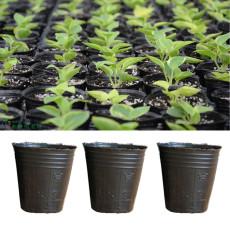 100PCS 3.74in x 3.93 in Round Black Plastic Nursery Plant Pots Disposable Garden Tools