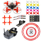 PRO 75mm V2 Crazybee F4 OSD 2S Whoop FPV Watch / Goggles RC Racing Drone with Frsky RX 700TVL Camera 25mW VTX with Parking Apron & Air Gate