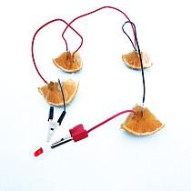 Feichao Fruit Battery Experiment Kit Cola Potato Lemon Power Clock Elementary School Science Experiment Material