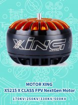 iFlight MOTOR XING X5215 X CLASS FPV NextGen Motor For Racing Drone Quadcopter