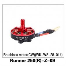 Original Walkera Runner 250 Advance drone accessories parts Brushless motor(CW )(WK-WS-28-014) Runner 250(R)-Z-09