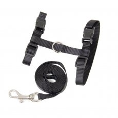 Fishing tackle and holes, catkins - black for the belt.