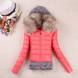 Big Fur Collar Warmth Casual Down Coat h229