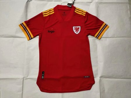 19/20 Player Version Wales home adult soccer jersey football shirt