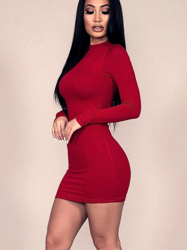 Long Sleeve High Neck Mini Dress with Zipper Back