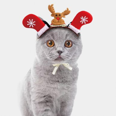 OneBling Pet Headdresses for Christmas and Halloween Santa Hats Dog Cat Dressing up Props