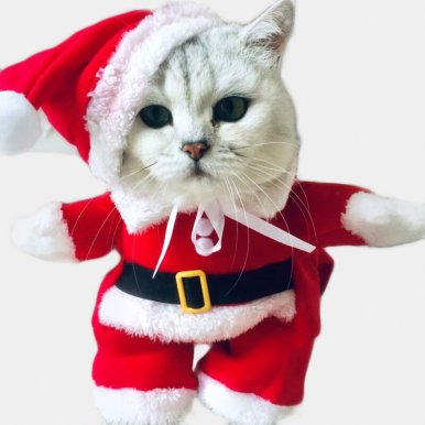 Pet Christmas Costumes Cats Dogs New Year Santa Clothes Kitten Outfits