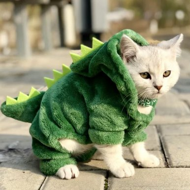 Pet Cat Dog Clothes Dinosaur Costumes Kitten Hoodie Puppy Clothing