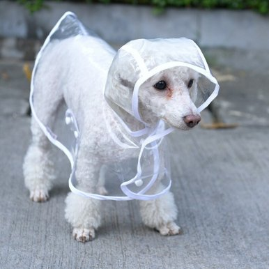 Transparent Waterproof Raincoat Dog Clothes Pet Clothing