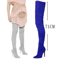 Arden Furtado Fashion Women's Shoes Pointed Toe Stilettos Heels Zipper Sexy Elegant Ladies thigh high Grey Boots shoes