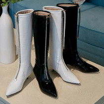 Arden Furtado Fashion Women's Shoes Winter  Pointed Toe Stilettos Heels Elegant Zipper Sexy Elegant Ladies Boots Concise Mature