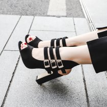 Arden Furtado summer high heels 10cm peep toe fashion sandals shoes for woman buckle black gladiator sandals chunky heels