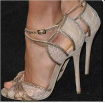 2018 summer high heels 11cm stilettos sexy lace peep toe cover heels ankle strap sandals wedding shoes for woman