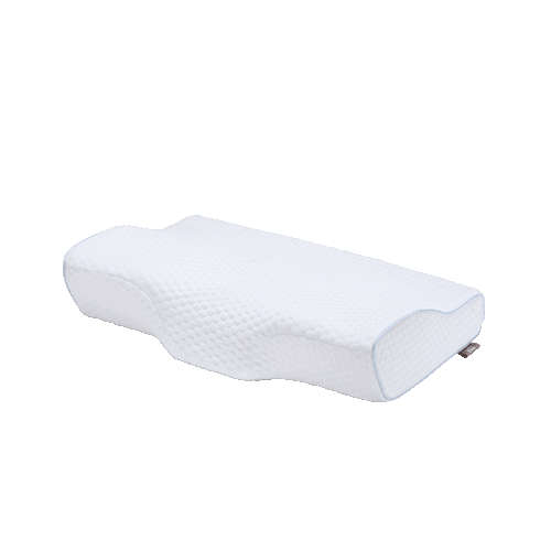 8H Butterfly memory foam pillow four seasons H2