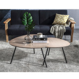 Barbizon  coffee table