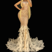 Sexy Drag Queen Costumes Rhinestone Fish Tail Feather Event Party Prom Long Dresses Celebrity Red Carpet Runway Stage For Singer