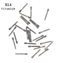 30pcs Dental pure TITANIUM SCREW POST size XL4 endodontic material bulk sale
