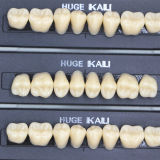 112Pcs/Pack HUGE KAILI A3 Dental Synthetic Polymer Resin Teeth T8 L8 34 A3