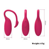 Wearable G-Spot Vibrator Long Distance APP Remote Control Kegel Exercise Ball For Women