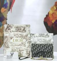 ディオールバッグコピー 2019新作 高品質 Dior チェーン ショルダーバッグ M5620-1